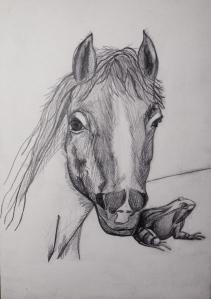 Hesten2
